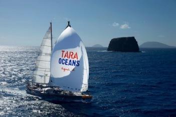 The Tara schooner. Credit: S. Bollet/Tara Expeditions